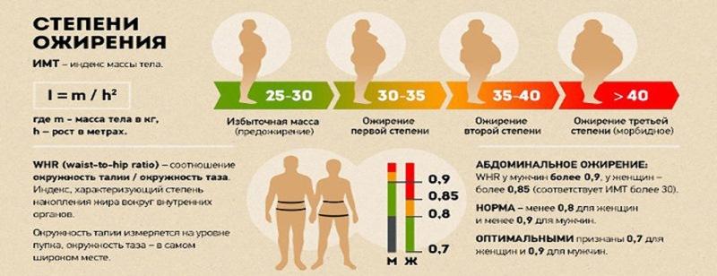 Школа Ожирения
